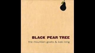 The Mountain Goats and Kaki King - Black Pear Tree EP [Full]
