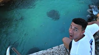 CRAZY 100 FEET Cliff Jumping In Jamaica!!