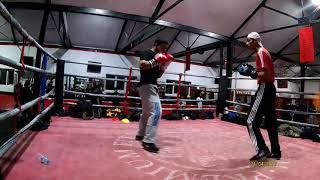 Ragga Fight Mode Sparring Amataur Boxing 60kg Juniors(3)