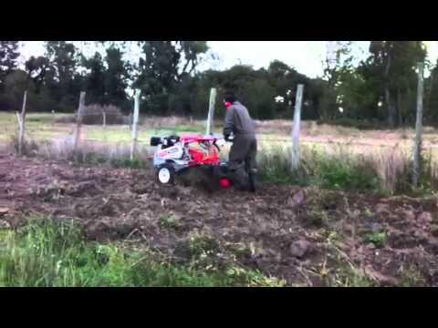 Moto cultivador Kipor