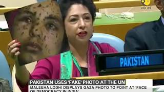 Watch how Pakistan reacts to envoy using