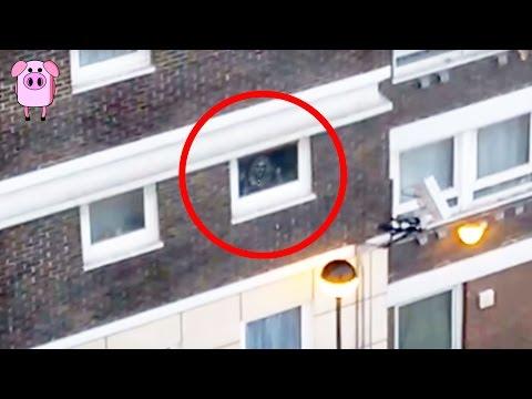 Xxx Mp4 5 Ghosts Caught On CCTV 3gp Sex