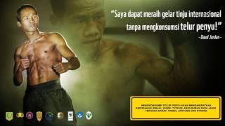 Aksi Perlindungan Penyu Di Kalimantan Barat Tahun 2012