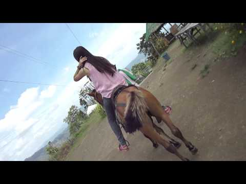 Xxx Mp4 Lady With The Horse 3gp Sex