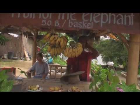 Xxx Mp4 Nepali Hot Video Xxxxxx 3gp Sex