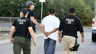 ICE Data Shows Half Immigrants Arrested Had Traffic Convictions Or No Convictions At All