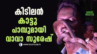 Amazing Trinket Snake rescued | Vava suresh | Snake Master EP 265 | Kaumudy TV