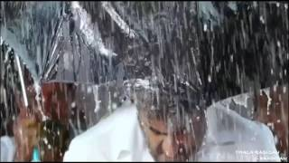 2016 thala mash up theri mass