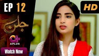Drama | Jallan - Episode 12 | Aplus ᴴᴰ Dramas | Saboor Ali, Imran Aslam, Waseem Abbas