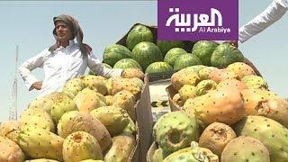 السعوديون يزاحمون الوافدين في بيع الخضار والفواكه