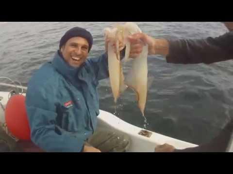 Pesca de Calamares a potera