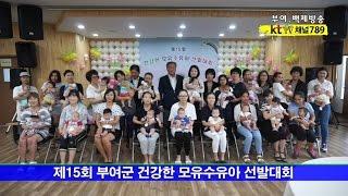 제15회 부여군 건강한 모유수유아 선발대회