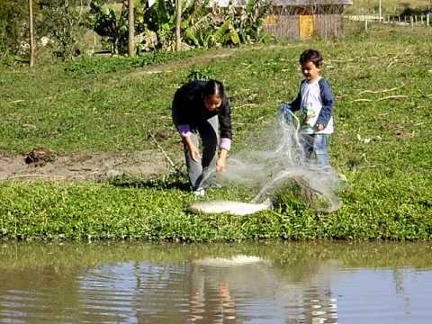 Vitor Pescando Carpa de Tarrafa