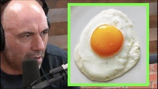 Joe Rogan | Can You Get Salmonella From Eating Eggs?