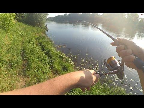 ловля судака на клязьме видео