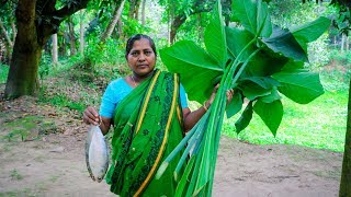 Hilsa & Arum Spinach Village Cooking Recipe by Village Food Life