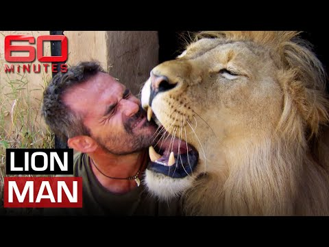 Lion Man 2014 Cuddling tickling and living with African lions 60 Minutes Australia