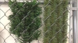 ForeverGreen Hedge Slats vs Dura Hedge Slats