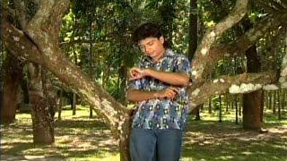 Monir Khan - Amar Dukher Golpo Sonar | আমার দুঃখের গল্প শোনার | Music Video 2017