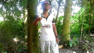 fuuny bangla kutok এই প্রথম এই ধরনের হাসির ভিডিও
