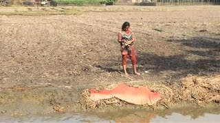 Giant Snake Caught in Canel by teen bengali girl