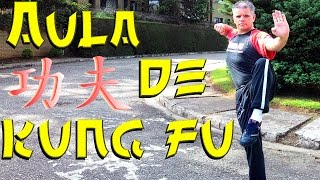 WING CHUN KUNG FU Do O Grande Mestre IP MAN - aula 02 #ArtesMarciais