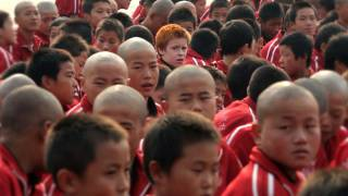 THE SHAOLIN KID - Official Trailer by Empty Mind Films