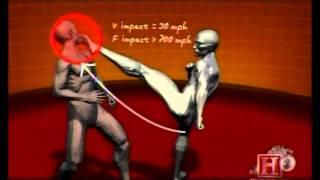 www.TheGioiTyPhu.com - Human Weapon (KungFu & Taekwondo).flv