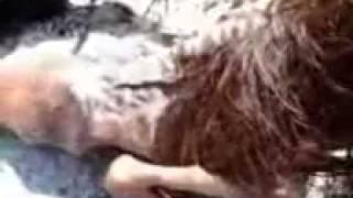 VIDEO MESUM  LUNA MAYA DAN ARIEL PETERPAN