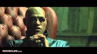 Blue Pill or Red Pill - The Matrix  Movie CLIP 1999 HD 360p
