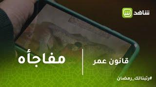 قانون عمر | فيديو على الفيس يكشففخ نصبه فؤاد بيومي لعمر