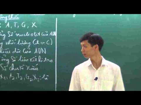 Xxx Mp4 Các Công Thức Và Phân Dạng Bài Tập ADN Phần 1 1 3gp Sex
