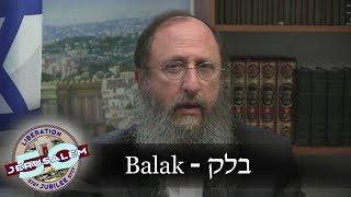 Weekly Torah Portion: Balak