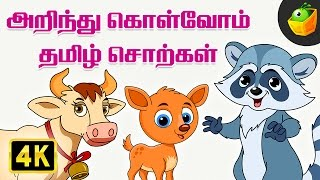 Learn Animals Spelling in Tamil | Non-Stop Compilations | Magicbox Animation | Tamil Rhymes for Kids
