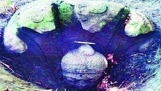 खुदाई में मिली 14 सौ साल पुरानी ऐतिहासिक चीज, देख नहीं हो रहा था यकीन