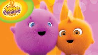 Cartoon | Sunny Bunnies | 30min Compilation 101-109 | Cartoons for Children