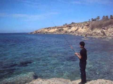 Fishing squid Ψαρεμα καλαμαριου Cyprus