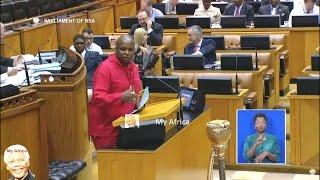 Shivambu Accusing  Zuma And Friends For Financial Crimes In South Africa