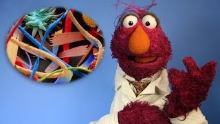 5 Hidden Worlds Revealed Under a Microscope (w/ Sesame Street) | #5facts