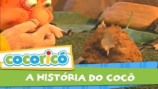 Videoclipe - A história do Cocô