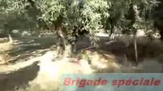 Brigade speciale de police gafsa