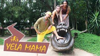 Yela Mama | Zumba Zin61 |  Coreografia: Felipe Siqueira