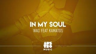 WAO feat. Kamatos - In My Soul (Lyric Video)
