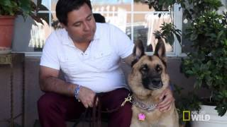 Cesar 911 S2 Episode 2 Follow-Up