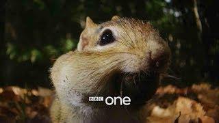 Hidden Kingdoms: Launch Trailer - BBC One