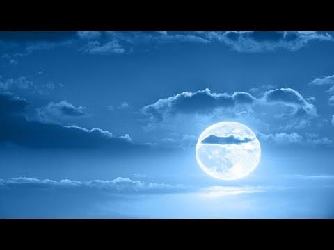 Deep Sleep Music, Peaceful Music, Relaxing, Meditation Music, Sleep Meditation Music, 8 Hour, ☯3261