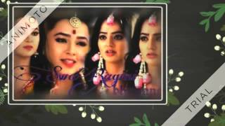 swaragini title song