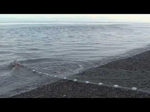 Xxx Mp4 How To Set A Beach Set Net 3gp Sex