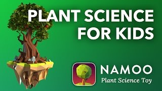 Plant Biology for Kids - NAMOO Plant Science Toy