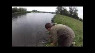 Jared's First Atlantic Salmon age 17 - 21 (2)